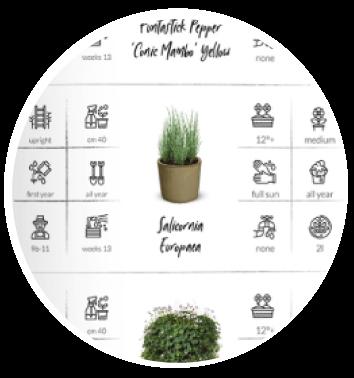 עיצוב קטלוג עיצוב קטלוגים משרד פרסום אהוי קריאייטיב סטודיו לעיצוב